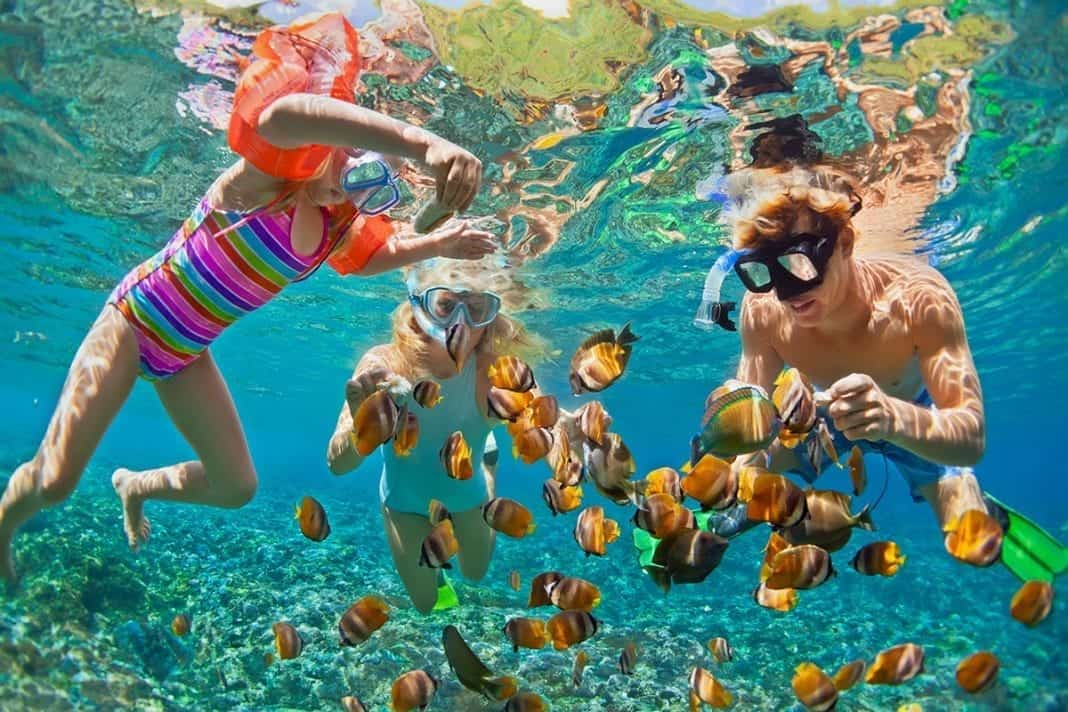 Family Snorkeling
